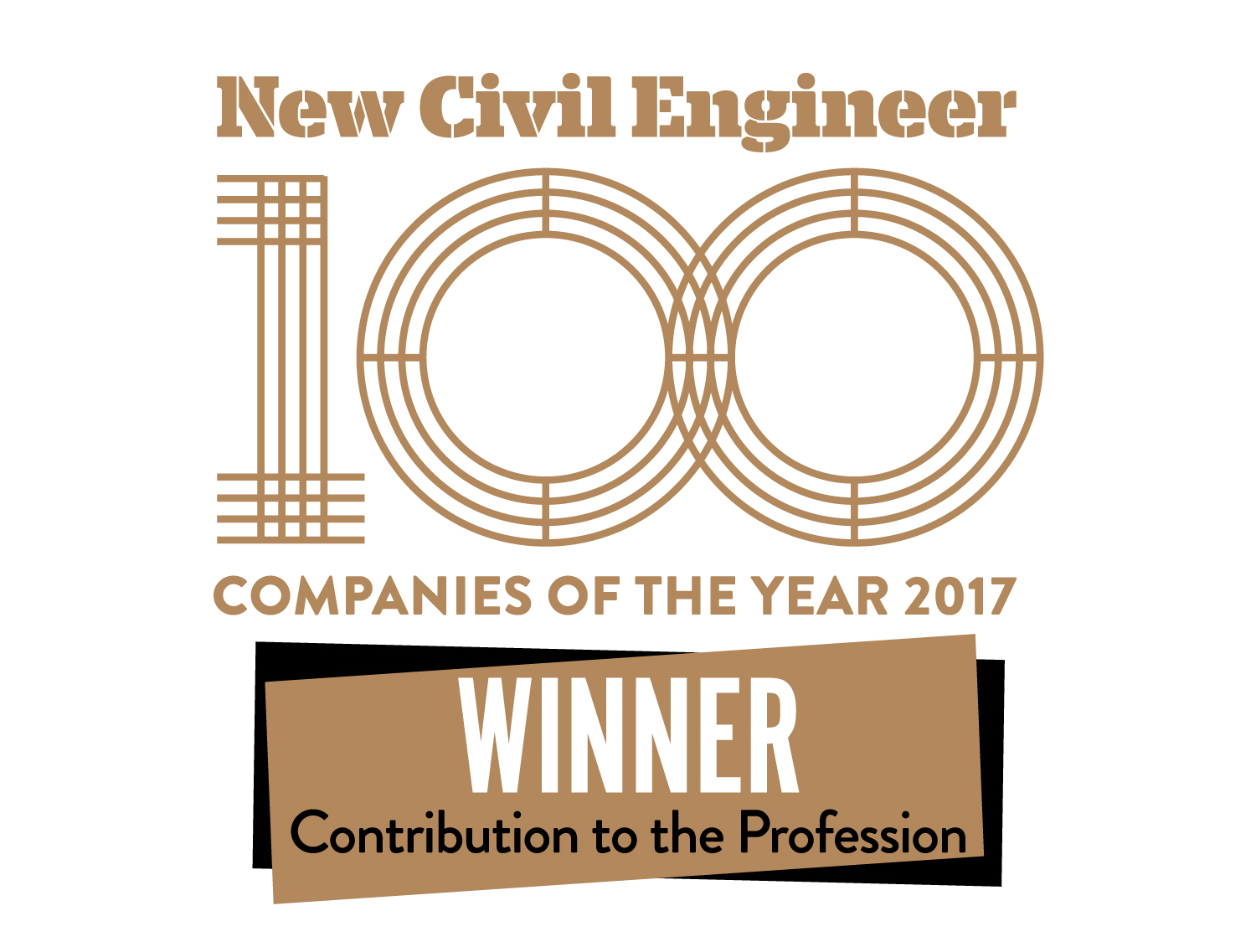 NCE100 Contribution to the Profession 2017